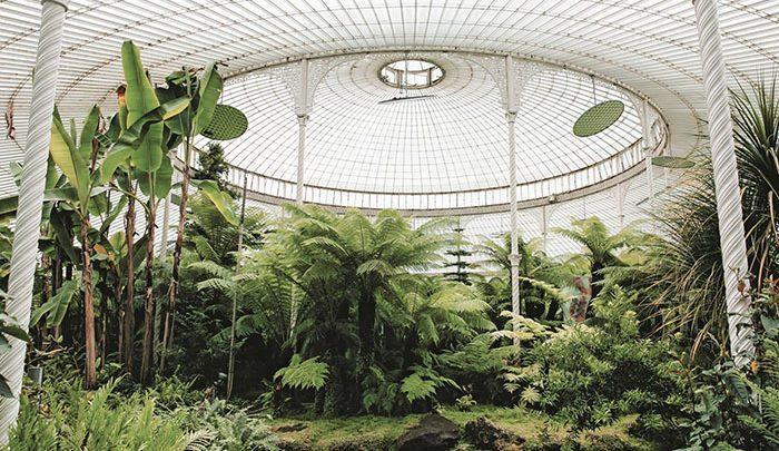 زیباترین گلخانه های دنیا همراه با این زوج جوان ، تصاویر